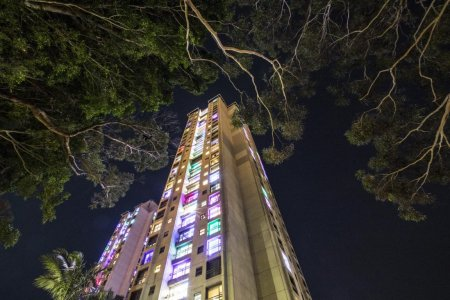 Towers in trees with illuminated windows